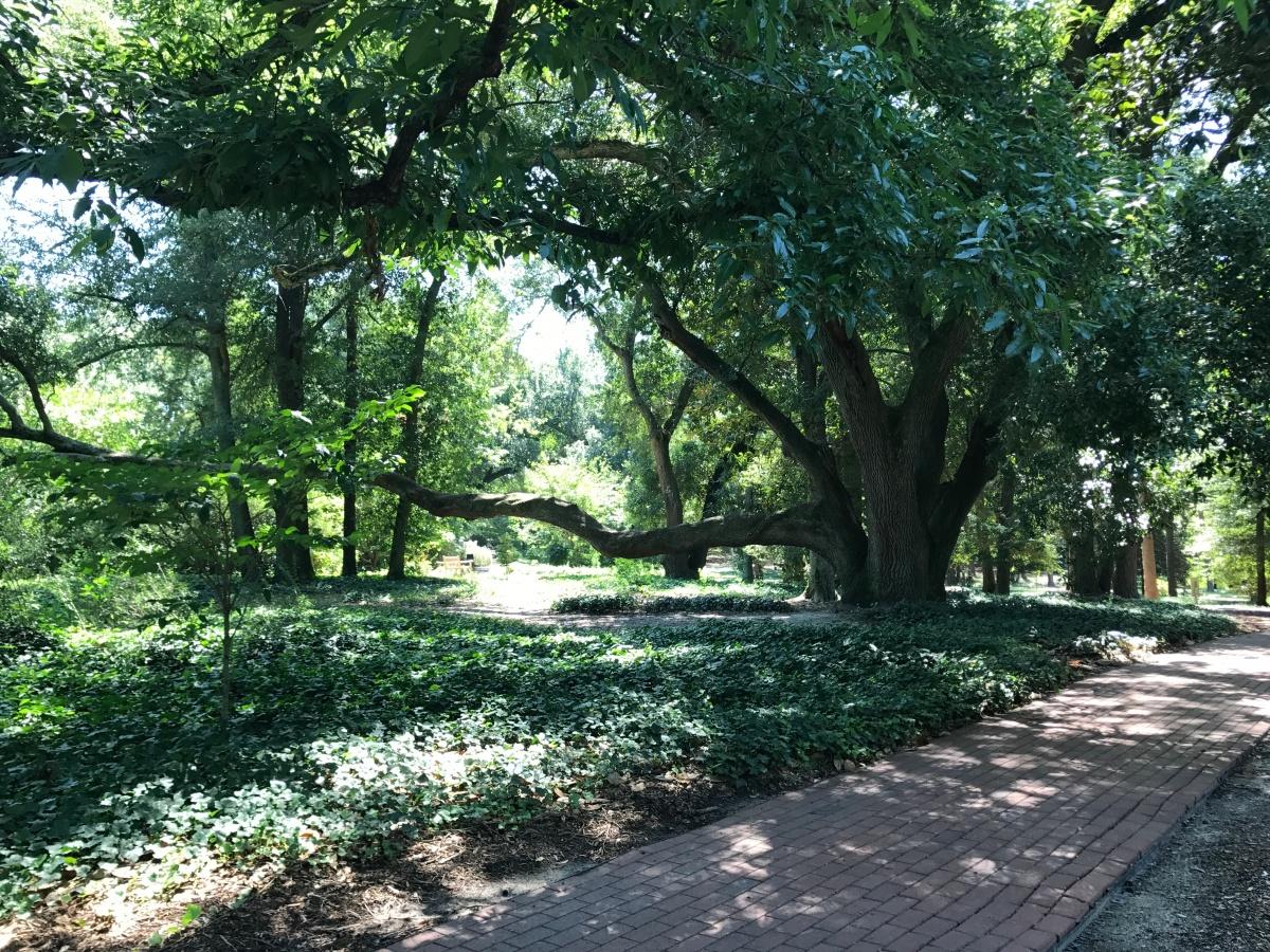 Finding Hope In Hopelands Gardens Wanderluster