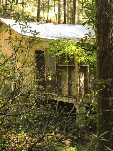 Abandon Cabin on Benton MacKaye Trail