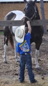 boy-petting-horse-557x999