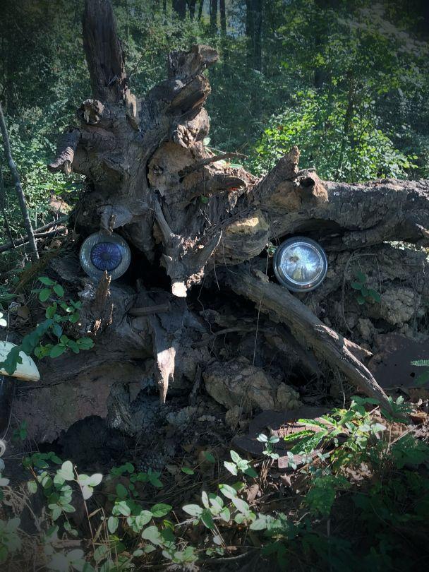 headlight tree